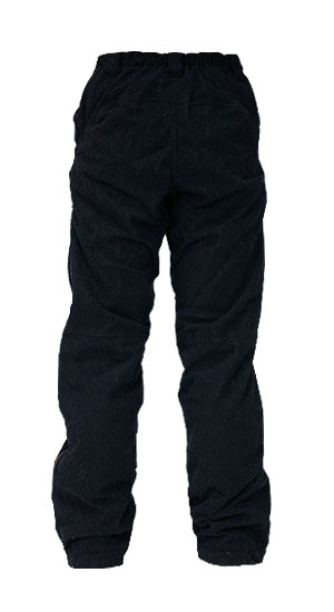 Waterproof Insulated Pant back BLACK